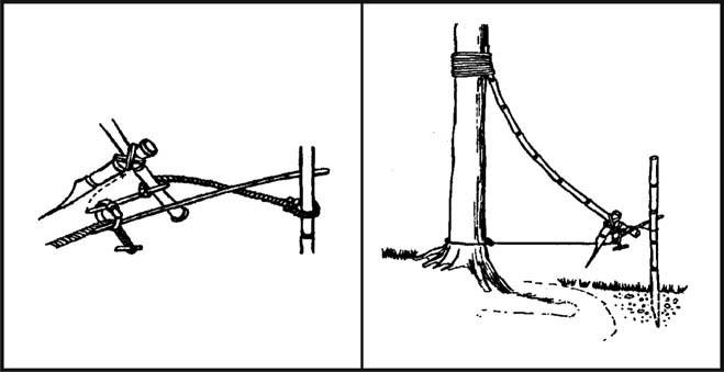 белье ловушка с петлей на дерево за ногу термобелье